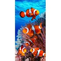 TOALHA PRAIA VELUDO FISHES 60384 - BOUTON - AZUL